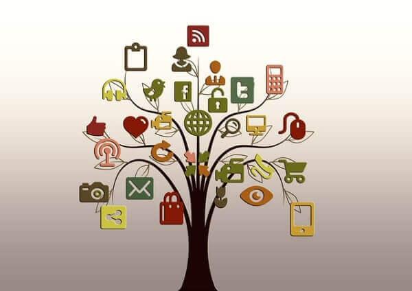 tree-200795_640-e1427084716400tree-200795_640-e1427084716400